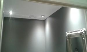 Verlaagd plafond 3